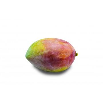 Keitt Mango - China (1 pc)