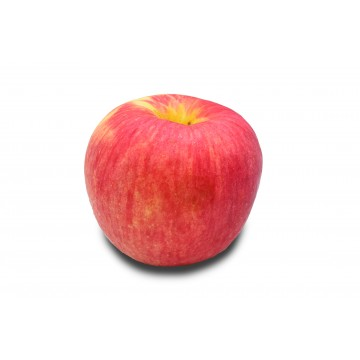 Apple Red Fuji Jumbo XXL - China (1 pc)