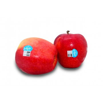 Apple Red Pacific Rose Large - USA (Pack of 2)