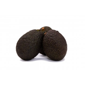 Avocado Hass - Mexico (Pack of 3)