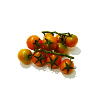 Bunch Cherry Tomato on Vine - Malaysia (250 gm)