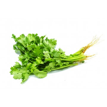 Coriander (Chinese Parsley) - Thailand (50 gm)