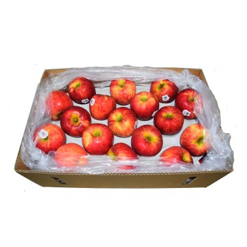 Apple Red Envy Carton - New Zealand (32 to 35 pcs)