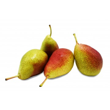 Pear Forelle - South Africa (Pack of 4)