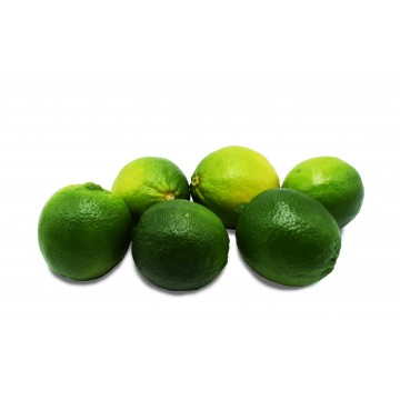 Lime Seedless Large - Vietnam (Pack of 6)