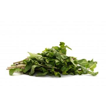 Mint Leaf - Malaysia (50 gm)