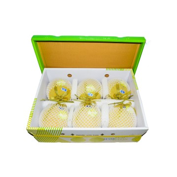 Muskmelon Japanese Premium Carton - Vietnam (6 pcs)