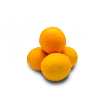 Orange Navel - Egypt (Pack of 4)