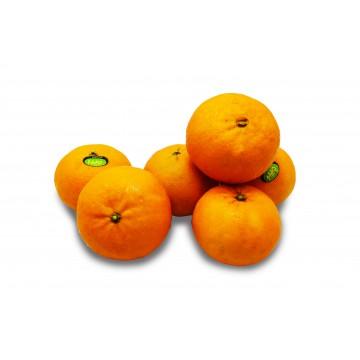 Jumbo Orri Mandarin Orange - Israel (800 gm)