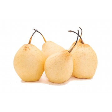 Pear Ya - China (Pack of 5)
