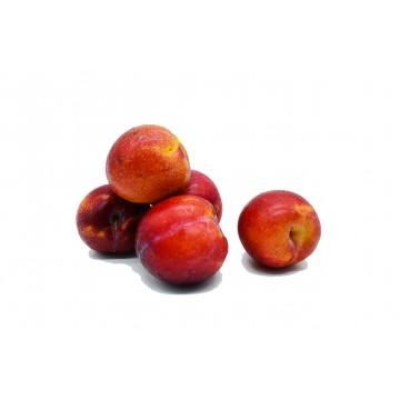 Plum Amber Jewel - Australia (500 gm)