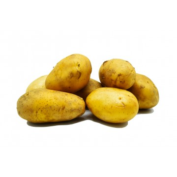 Potato Holland - China (per kg)