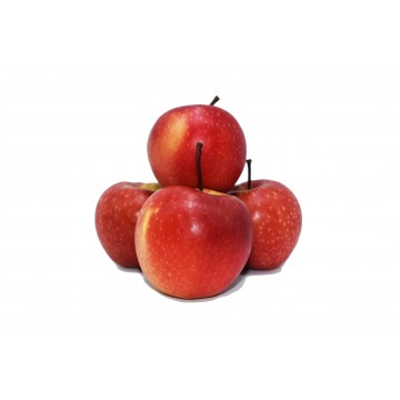 Apple Red Royal Gala - New Zealand (Pack of 4)