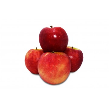 Apple Red Pacific Rose - New Zealand (Pack of 4)