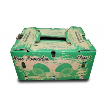 Avocado Carton - Mexico (70 pcs)