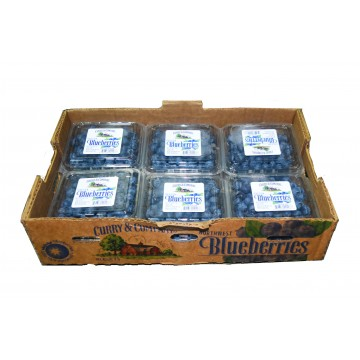 Blueberries Carton (12 punnets)