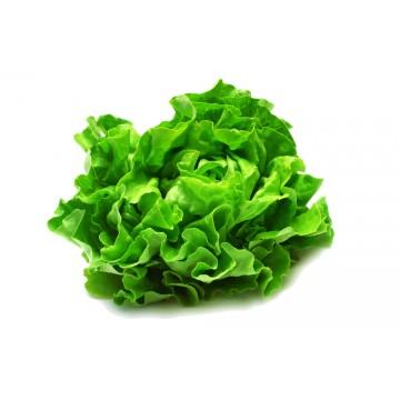 Butterhead Lettuce - Malaysia (300 gm)