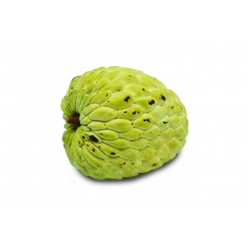 Custard Apple - Thailand (1 pc)