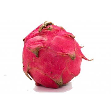 Dragonfruit Red - Malaysia (1 pc)