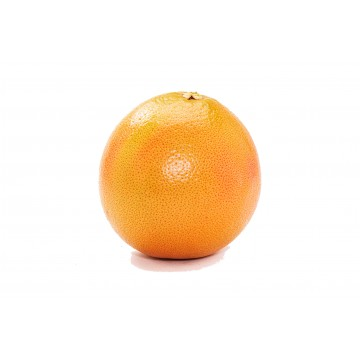 Grapefruit Red Jaffa - Israel (1 pc)