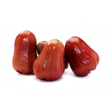 Jambu Rose Apple - Thailand (Pack of 4)