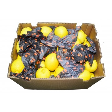 Lemon Carton - Turkey (100 pcs)