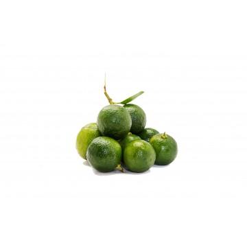 Lime Calamansi Small - Malaysia (200 gm)