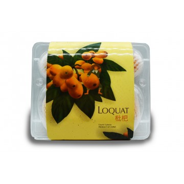 Loquat - China (Pack of 5)