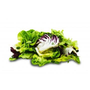 Mesclun Salad DIY Pack - Malaysia (150 gm)