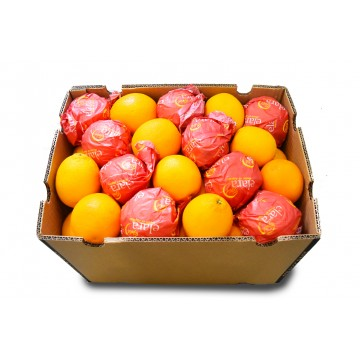 Orange Valencia Carton - Egypt / South Africa (72 - 88 pcs)