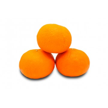 Orange Honey Murcott - Australia (Pack of 3)