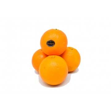 Orange Purespect - USA (Pack of 4)
