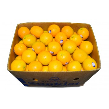 Orange Sunkist Carton (113 pcs)