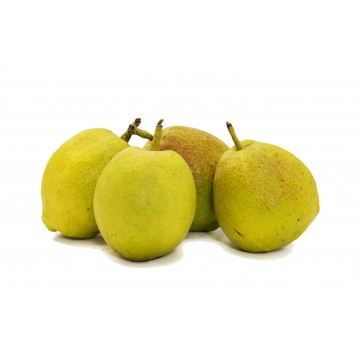 Pear Fragrant - China (Pack of 4)