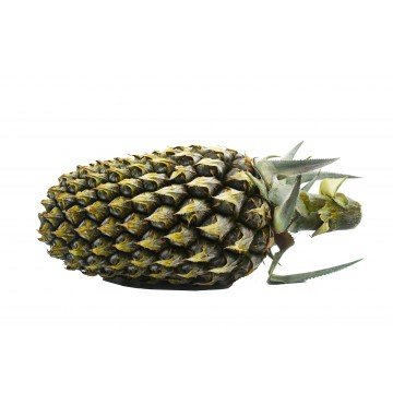 Pineapple Normal - Malaysia (1 pc)
