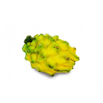 Dragonfruit Yellow Pitahaya - Ecuador (1 pc)