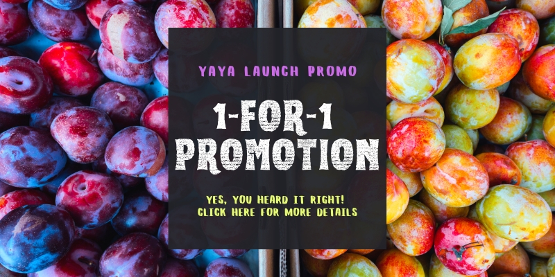 1 For 1 Promotion 50 % Off