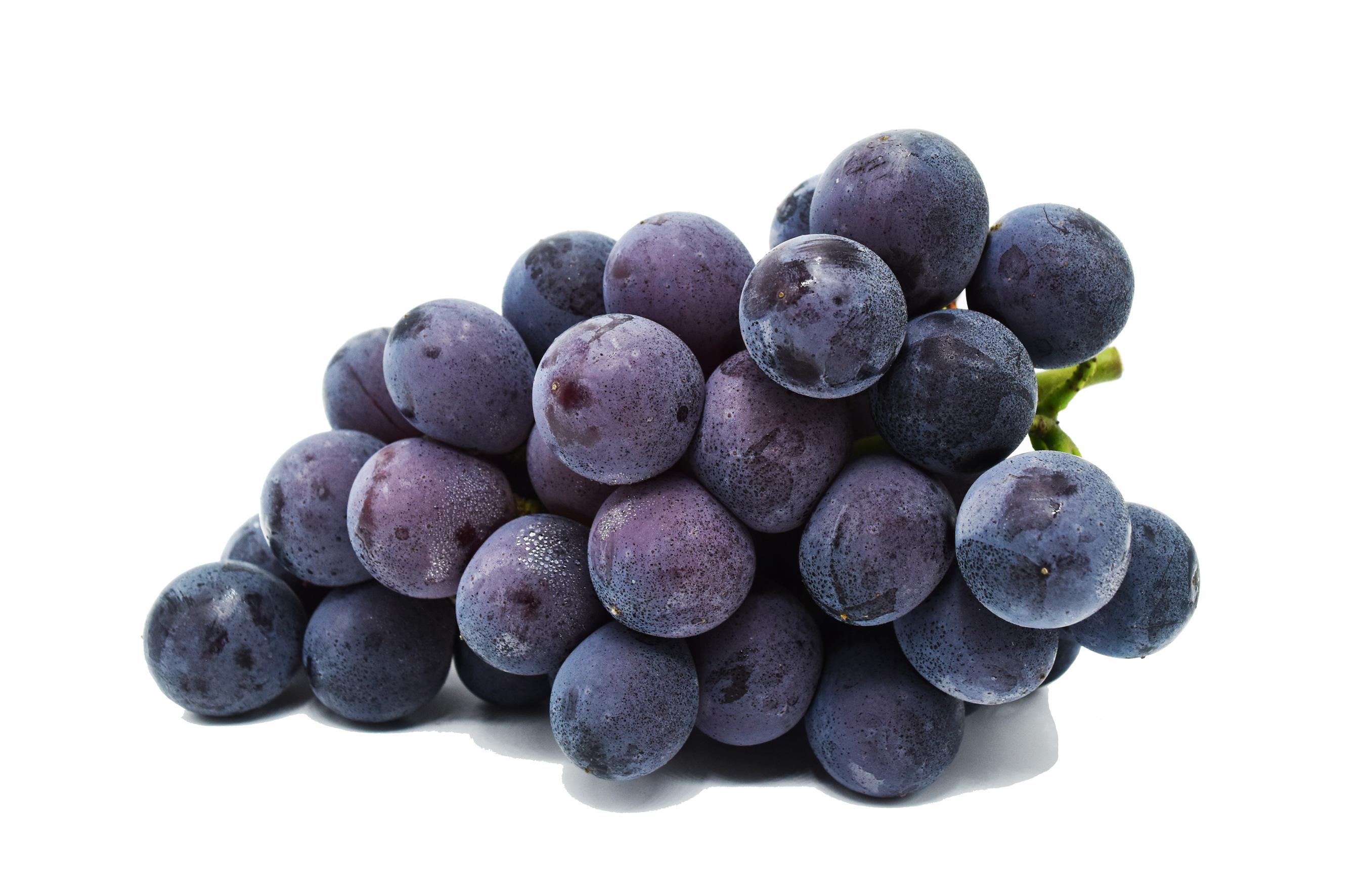 grapeskyoho2