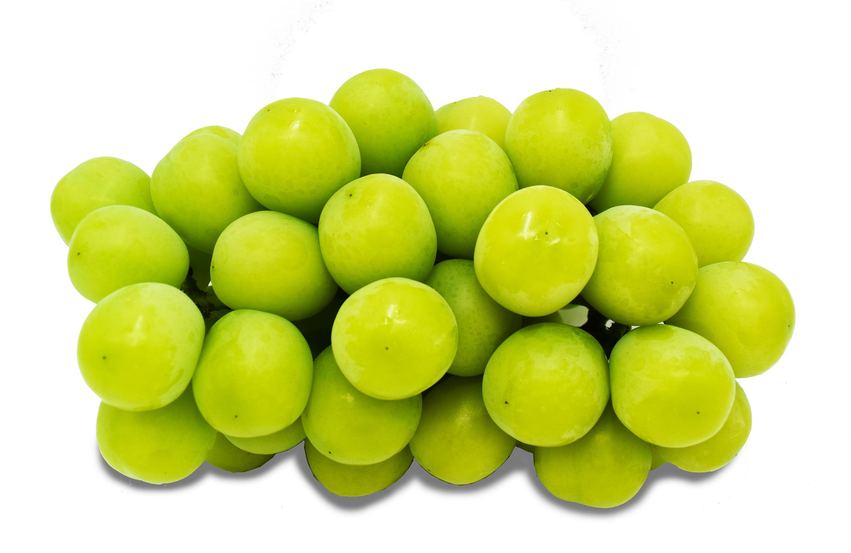 grapesshinemuscat2