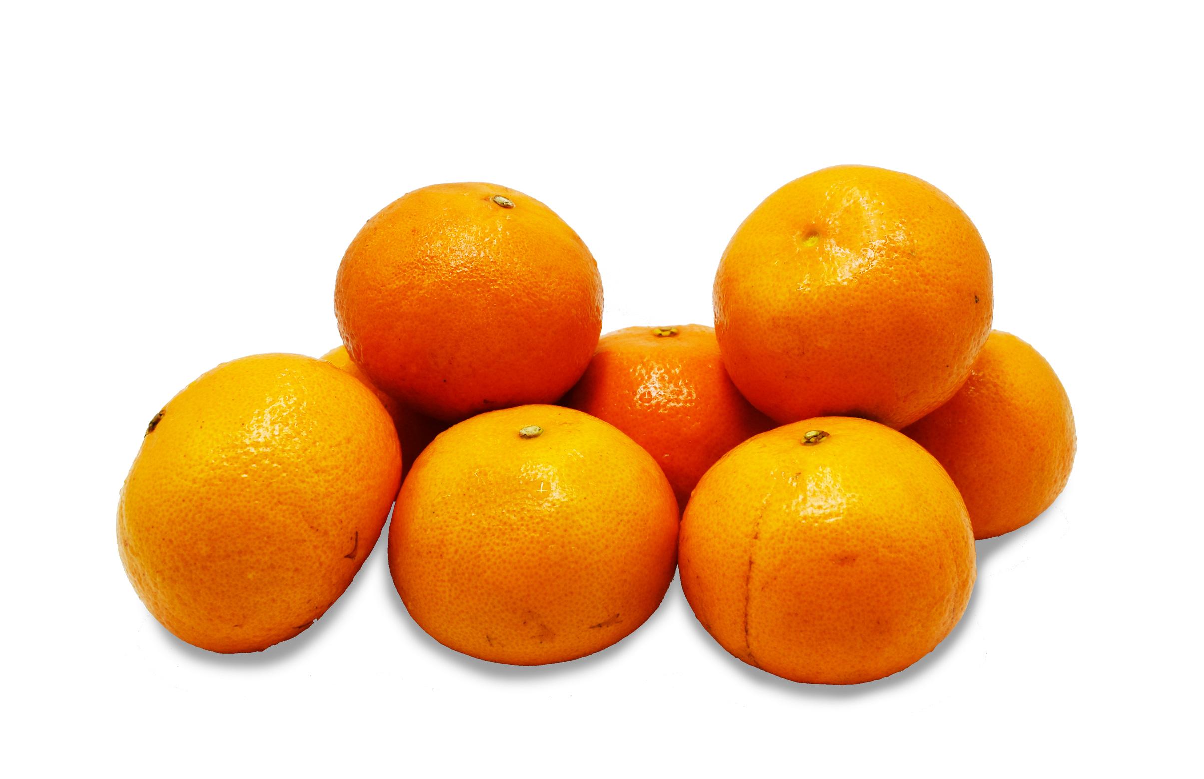 orangehoneymurcott