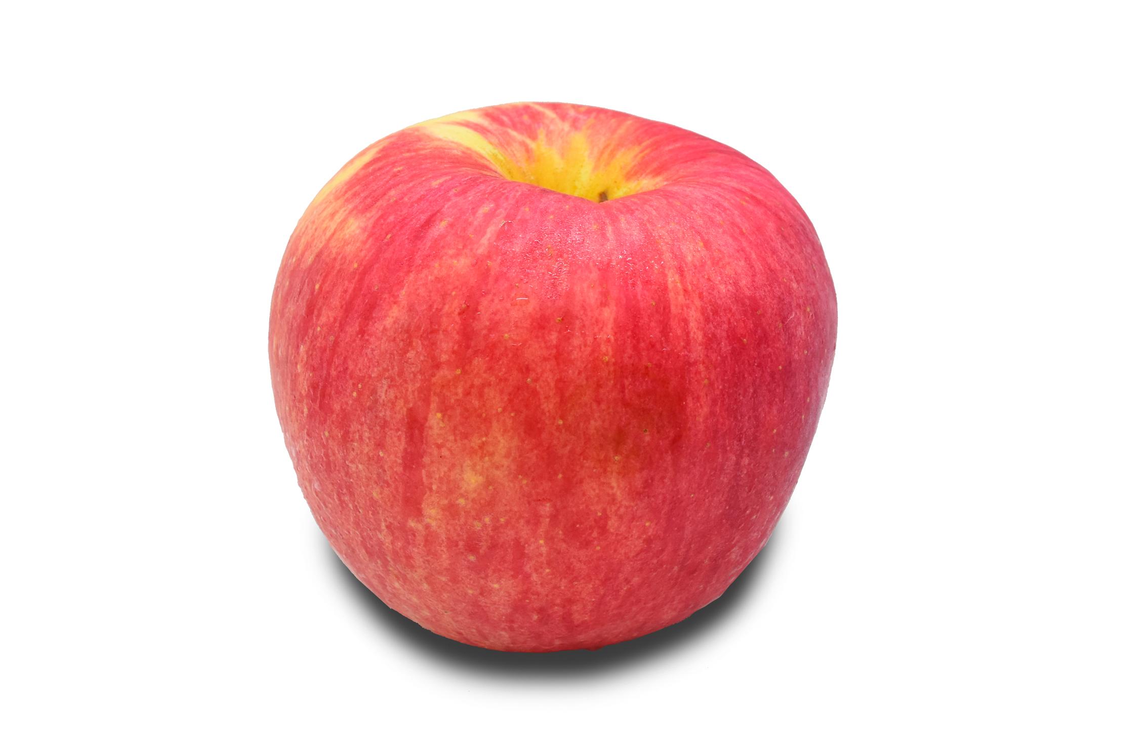 apple-fuji-jumbo