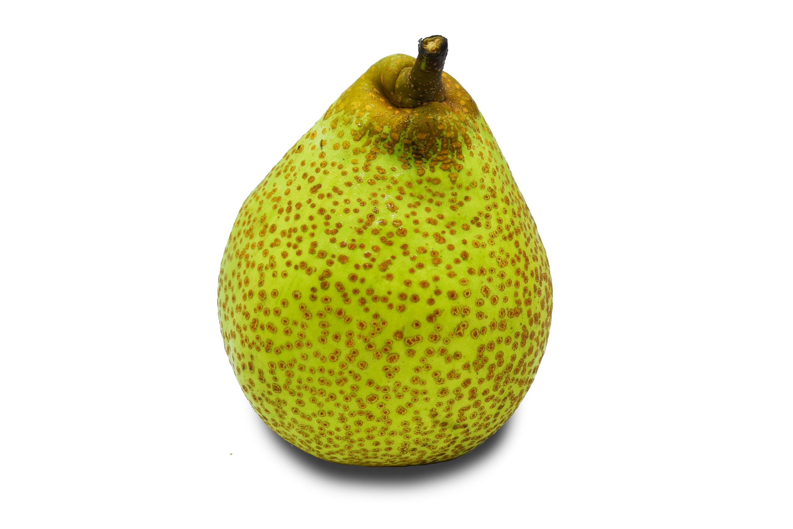 pear-lai-young