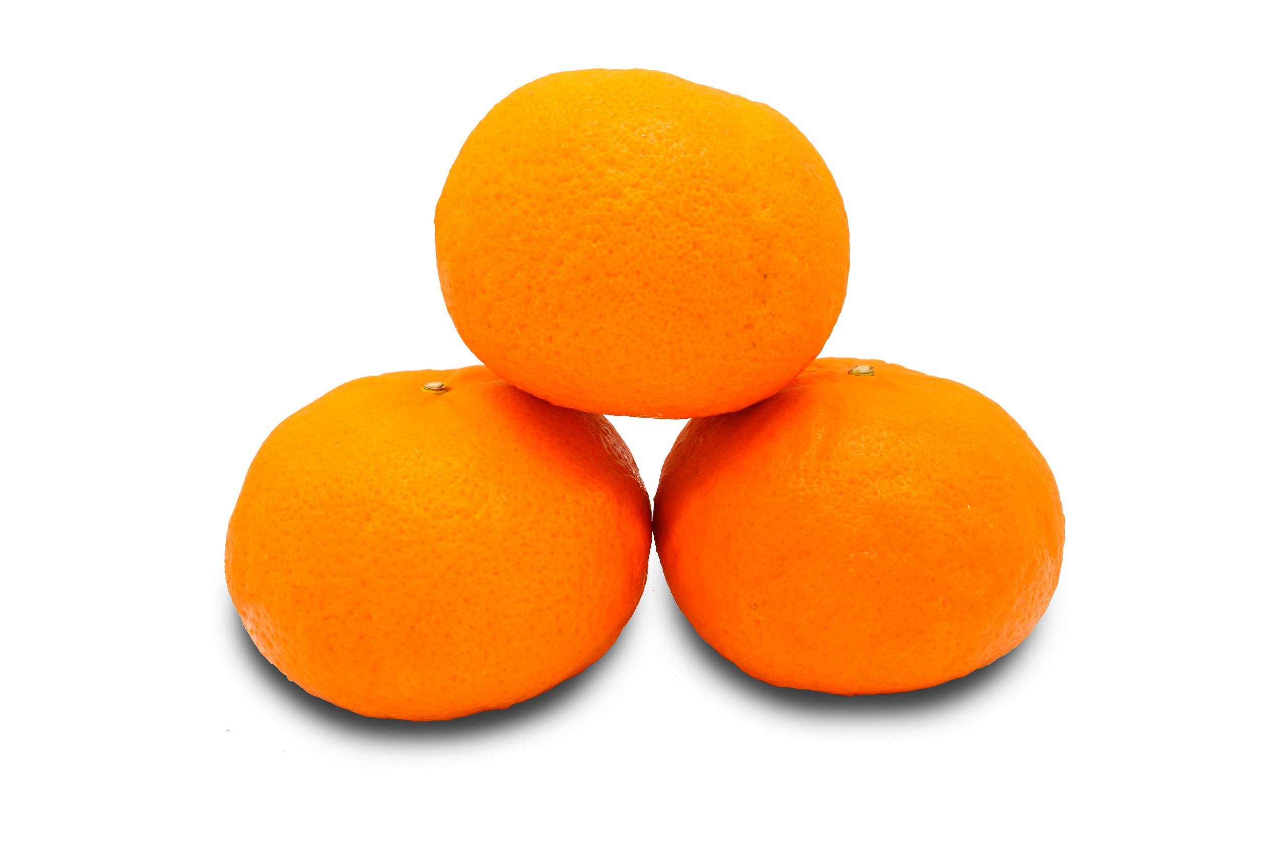 orange-honey-murcott