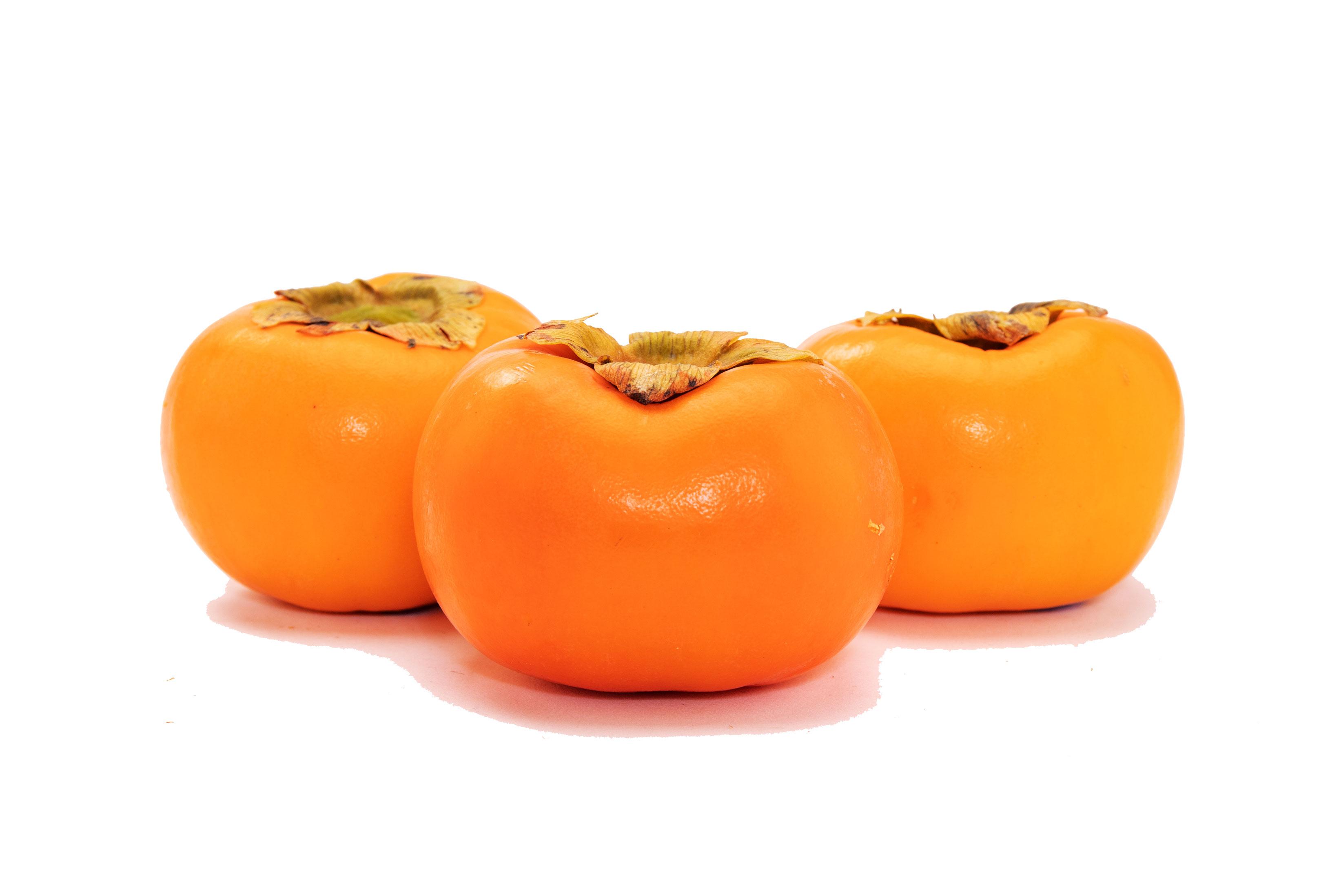 persimmon-multi-yypy