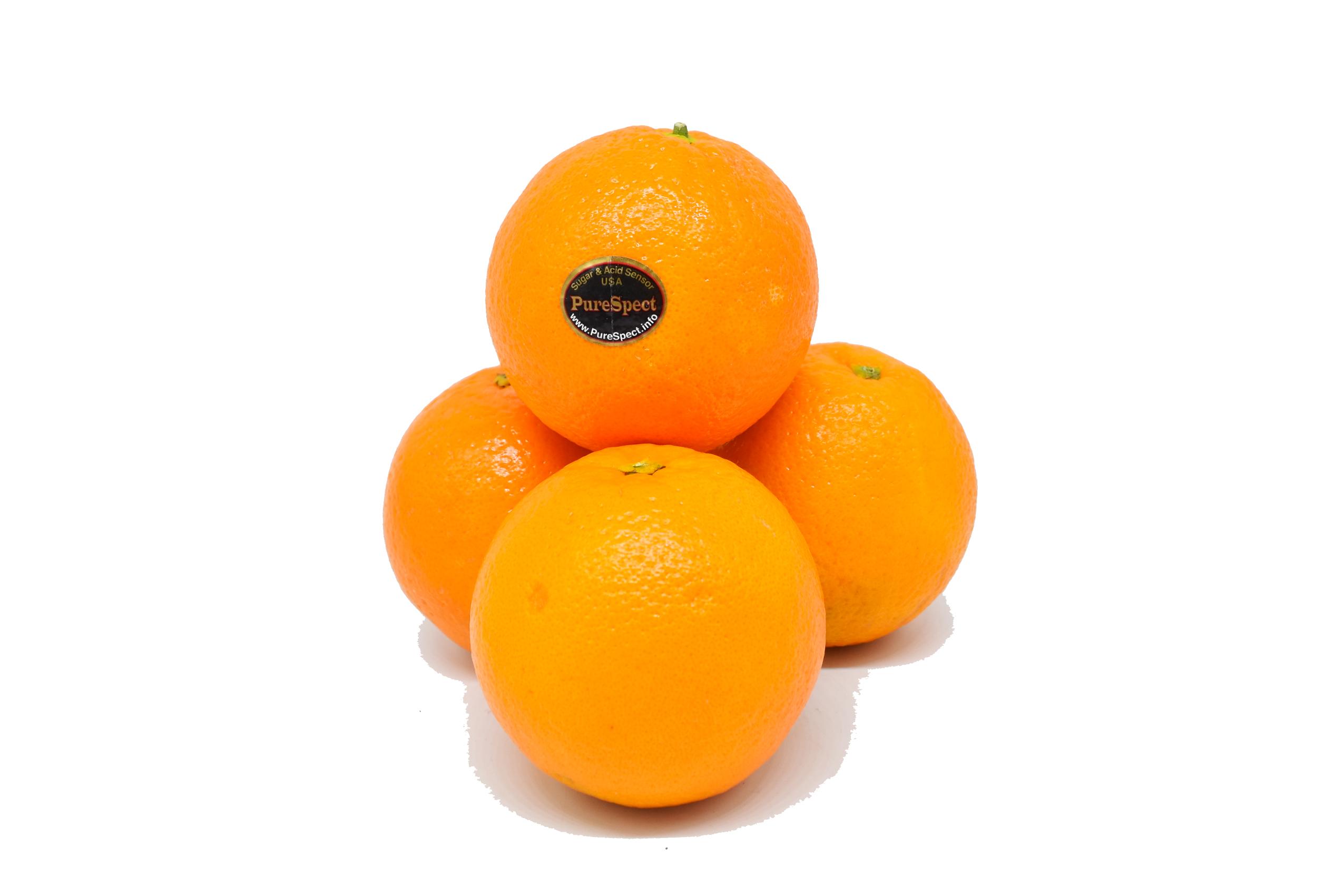 oranges-purespect-4