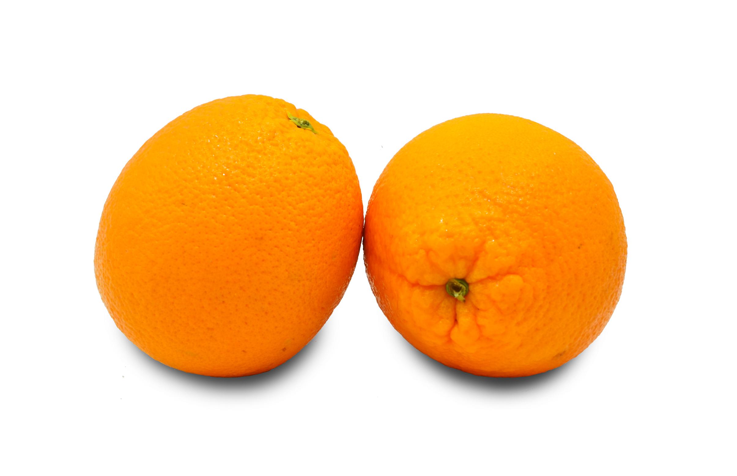 orange-jumbo-navel-aus